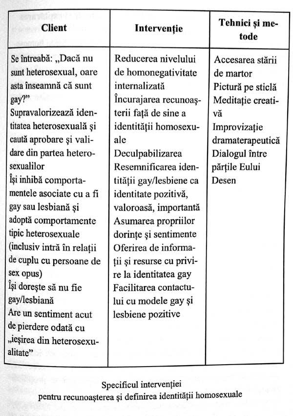 Psihologia identitatii gay. Provocari, impasuri si suport terapeutic - Iuliana E. Molnar