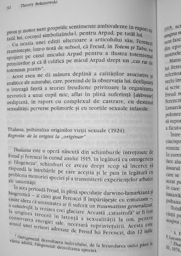 Donald Woods Winnicott - Denys Ribas