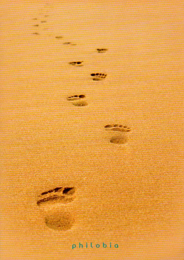 Urme pe nisip - Anne-Dauphine Julliand