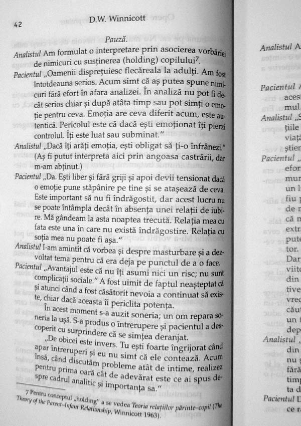 Sustinere si interpretare. Fragment de analiza. Opere (vol. 5) - Donald Woods Winnicott